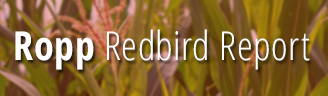 Ropp Redbird Report